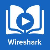 Learn Wireshark : Video Tutorials 1.0