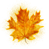Leaf Catch - Augmented RealityGrrlGrammerCasual