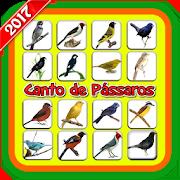 Canto de Pássaros (Offline) 1.1