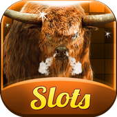 Buffalo Slots Free Slot Casino 1.1