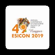 ESICON 2018 1.01