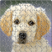 Sweet Puppies Puzzle 1.0.2