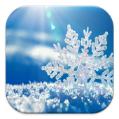 Snow Wallpaper 1.0