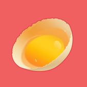 Catch eggs 1.1