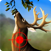 Jungle Deer Hunting Game 2017: Deer Hunting game 1.2