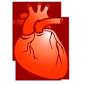 Cardio Drug Interaction 10