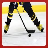 Ice Hockey 1.0