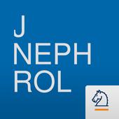 Journal of Nephrology 3.04