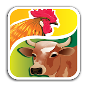 Novatek Poultry 1 0 APK Download - Android Tools Apps