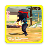 Guide for Clumsy Ninja 1.0