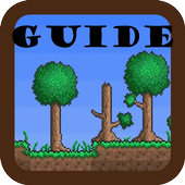 Guide for Terraria 1