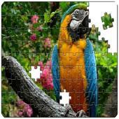 Master Puzzle - Birds 1.0