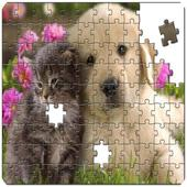 Master Puzzle - Cats & Dogs 1.0