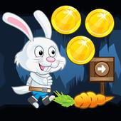 Rabbit run adventure 1.0