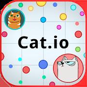 Cat.io 1.3