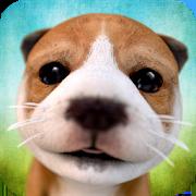 Dog SimulatorSwift Apps LLCSimulation