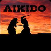 Aikido 1.0