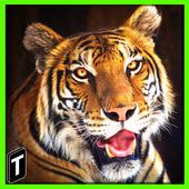 Super Tiger Sim 2017 1.0