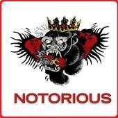 UFC Game Quiz : The Notorious Conor Mcgregor 3.4.7z
