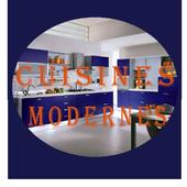 Modern kitchens 1.1