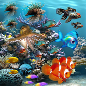 Aquarium LiveWallpaper 1.0.0