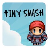 Tiny SmashTechspawn SolutionsCasual