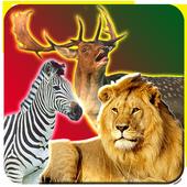 Safari Animal Hunting 1.0.1