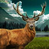Deer Hunt 2016 1.1