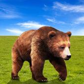 Hungry Bear Attack 1.6
