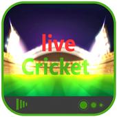 cricinfo live cricket score 2.2