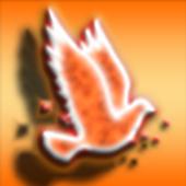Fire Bird 1.0