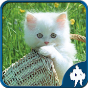 Cats Jigsaw Puzzles 1.9.0