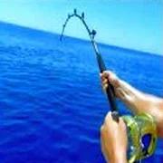 Fishing Puzzle 19.1