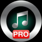 Music Player Pro 5.5
