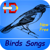 Birds Songs and Sounds (HD Sounds) 3.0