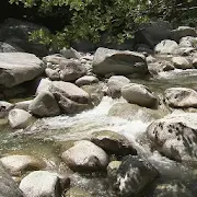 Stormy brook and sun 1.3