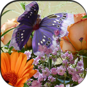Butterfly & Flowers Puzzle 1.0