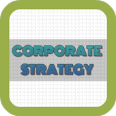 Corporate Strategy 1.1