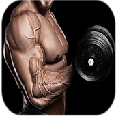 Arm Workouts 2.3