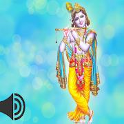 Krishna Bhajan Hindi 1.0