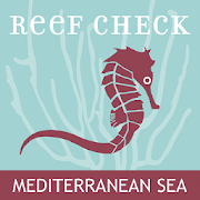 Reef Check Med 3