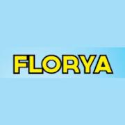 Florya Heesch 13.4.0