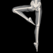 Anatomy for Artists: Ballet 1.0