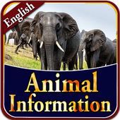 Animal information App 1.4