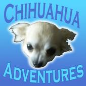 Chihuahua Adventures 1.0
