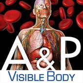 Anatomy & Physiology 1.4.00
