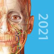 Human Anatomy Atlas 2021:Complete 3D Human Body 2021.2.27