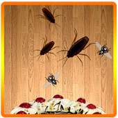 Kill Insect - Beetle Smasher 1.0.2