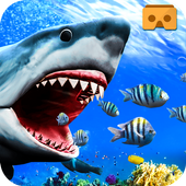 VR Shark Attack Angry Blue Whale