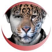 Animal Faces - Face Morphing 1.2.3
